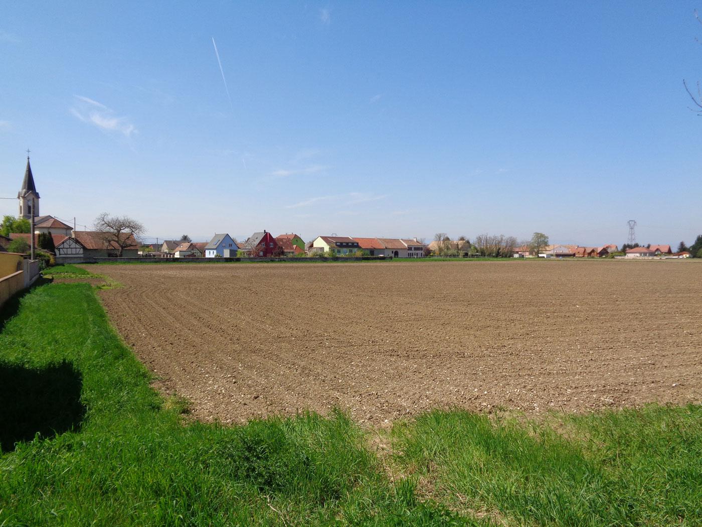 Lotissement Weckolsheim Alsaterre
